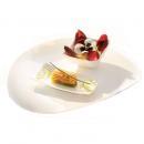 Arcoroc Zenix Tendency   Špeciálne sklenené taniere